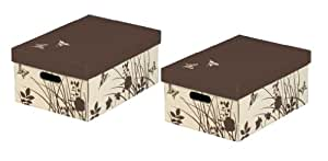 Nips 32 x 45.5 x 19cm Butterfly Storage Boxes with Lid - Multi-Coloured (Pack of 2)