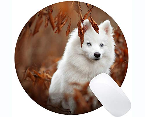 Runde Gaming-Mausunterlage aus Naturkautschuk, bedruckt mit Samojeden-Rändern für Hunde