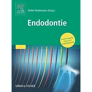 Endodontie: Studienausgabe Praxis der Zahnheilkunde (PDZ)