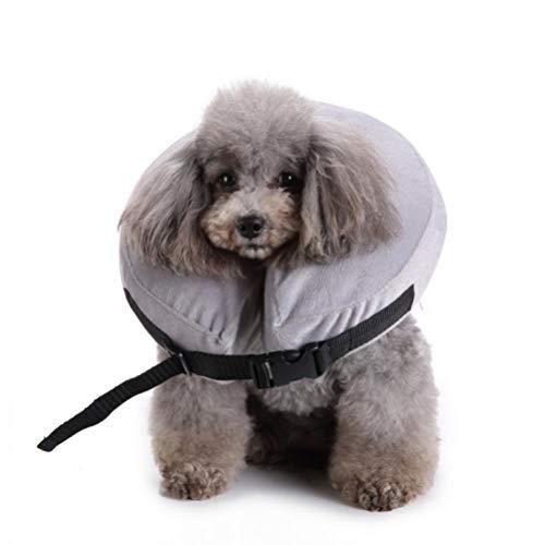 Inflable collar perro doméstico gato cuello protección