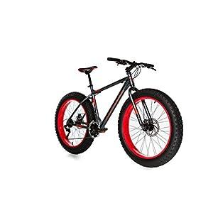41TZpCBD57L. SS300 MOMA Bikes Fat Bike Alluminio Shimano 21 V