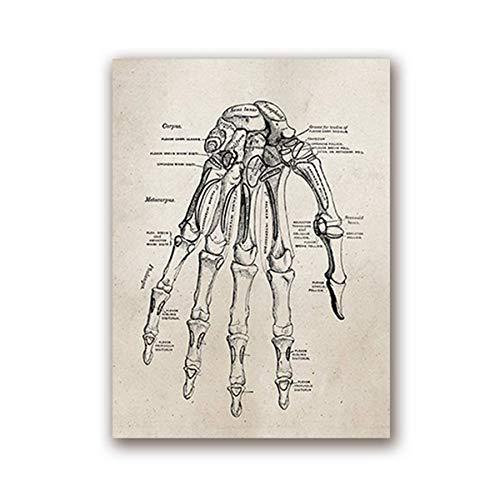 Bilder Auf Leinwand,Die Menschliche Anatomie Wissenschaft Hand Knochen, Retro-Stil Leinwand Gemälde Kunstdruck Poster Bild Wand Schlafzimmer Wohnzimmer Dekoration Malerei Wandbild -
