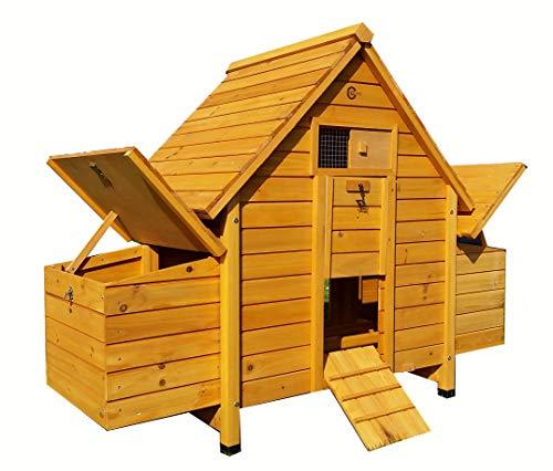 Cocoon Poulailler en bois avec 4 nichoirs et bac de...