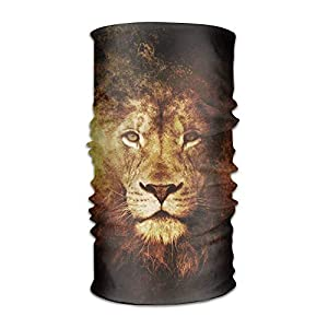 GHEDPO Stirnband Headwear Abstract Lion Multifunctional Headbands Outdoor Magic Scarf As Sport Headwrap,Sweatband,Neck Gaiter,Tube Mask,Face Bandana