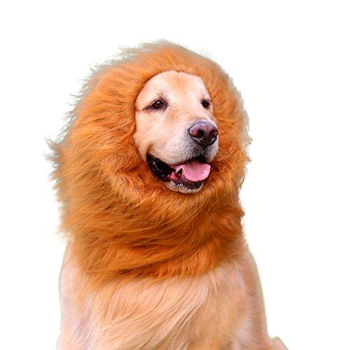 Hundekostüm Löwenmähne Anbber Hunde Kostüme Halloween (Halsumfang bis ca. 70cm) (Fledermaus Hund Kostüme)