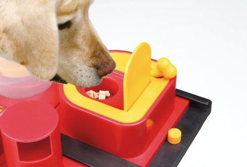 Trixie 32013 Dog Activity Poker Box 2, 31 x 10 x 31 cm, farblich sortiert - 4