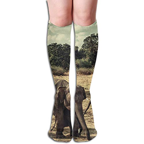 Kostüm Frankreich National - CVDFVFGB Compression Socks Elephants National Park High Boots Stockings Long Hose for Yoga Walking for Women Man