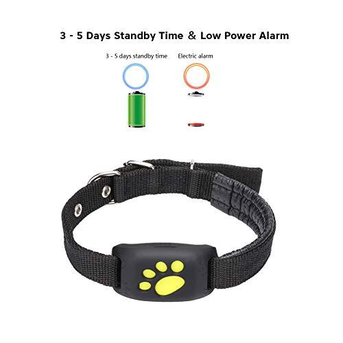 CRYSNERY Mascota Rastreador GPS Perro Gato Collar Impermeable Carga por USB GPS...