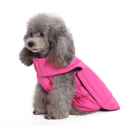 PapiPet Rose Red Dogs Coat mit Klettverschluss für den Winter, Simple Pet Jumpers Waschbare warme Kleidung für große mittelgroße Haustiere,Meihong,M