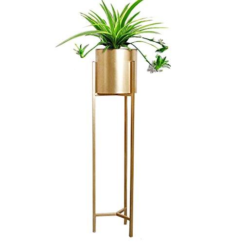 LYQZ Nordic Eisen Blume Ständer Moderne Boden-Stil Goldenen Wohnzimmer Dekoration Blume Rack Haus Pflanze Blumentopf Rahmen Balkon Display Regal (größe : 22 * 22 * 90cm)