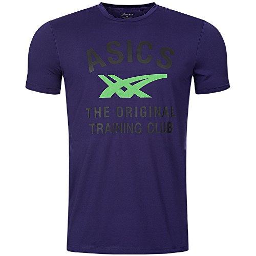 Asics Performance Stripe Tee Herren Sport T-Shirts Grau