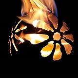 Gartenfackel Feuerkugel – Blume XL + 1Liter B...Vergleich