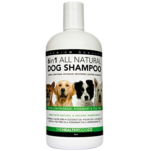 6 in 1 All Natural Dog Shampoo | Lemongrass,
