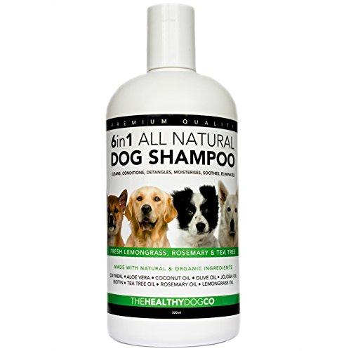 shampoing-6-en-1-chien-100-naturel-citronnelle-romarin-arbre-a-the-500ml-le-meilleur-nettoyant-pour-