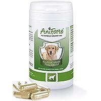 AniForte Pastillas AntiGarrapatas para Perros Pequeños hasta 10kg. 60 cápsulas. Producto Natural. Complejo de Vitamina B que Actúa como Escudo Anti Garrapatas.
