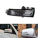 Skuntuguang Auto-Blinker Tür-Seitenspiegel-Signalleuchte für Benz S-Klasse E-Klasse C-Klasse - Right wing