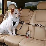 Kurgo Sicherheitsgurt für Hunde mit Seilrutsche, Einheitsgröße, Schwarz/Orange, Auto Zip Line, 00032