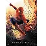 Spider-Man Regular Poster Swinging
