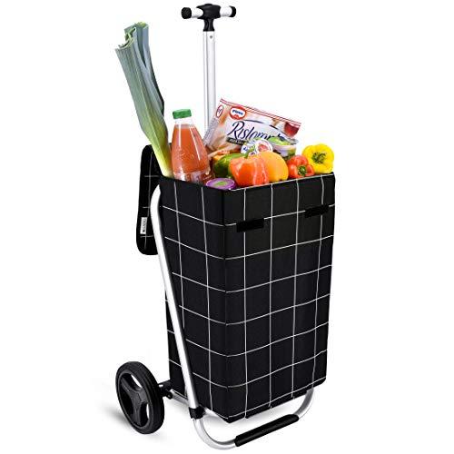 Mit Rädern Trolley Tasche (Einkaufstrolley Arifana in schwarz 35L mit Teleskopgriff - Transport-Wagen Trolley klappbar mit großen Rädern bis 25kg belastbar)