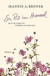 Ein Riss im Himmel: Roman