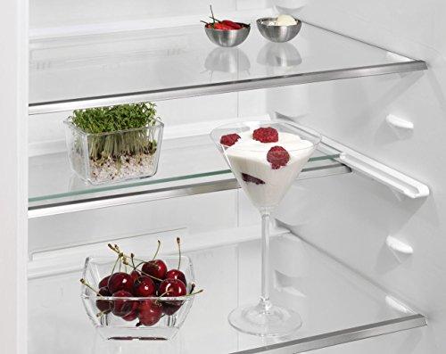 Aeg Kühlschrank Glasplatte : Aeg kuehl gefrier kuehlschrank ratgeber infos top produkte