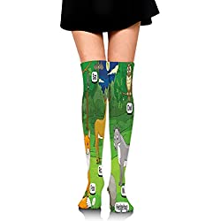 BHWYK Compression Socks Women & Men,Forest with Cartoon Animals with Names Educational Intellectual Fun Kids Game,Best for Running,Medical,Athletic Sports,Flight Travel,65cm Long Socks