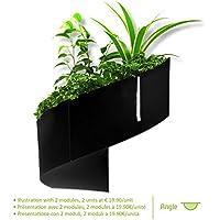 Modul'Green - Maceta decorativa de pared (para interiores y exteriores), color negro