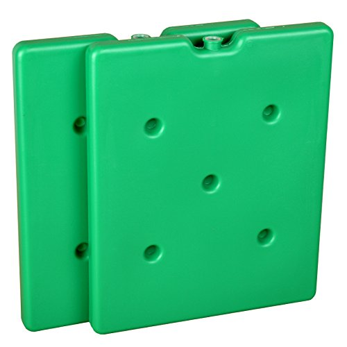 Kühlakku Set Doppelpack - 2 x 1300g Tiefkühlakku grün - Kühlakkus für langanhaltende Kühlung zum Kühlen von Speisen und Getränken (für den Einsatz in Kühlbox und Kühltasche)