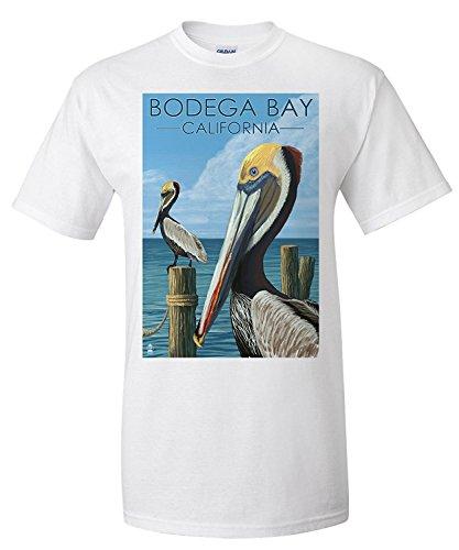 Bodega Bay, California - Brown Pellican (Premium T-Shirt)