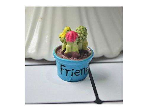Mikro Miniatur Kaktus Fairy Garden Micro Landschaft Puppenhaus Figur Dekor Bonsai (Freund) Landschaftsdekoration