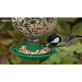 Bottle Top Bird Feeder Kit Bottle Top Bird Feeder Kit 41TgirdlENL
