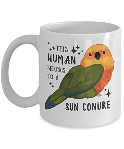 TK.DILIGARM - This Human is Owned by a Sun Conure - 11 OZ Coffee Mug for Sun Conure Lovers, Owners, Parrot mom, Conure dad for Christmas, Birthday, Valentine's Day, Thanksgiving (Conure Parrot Sun)