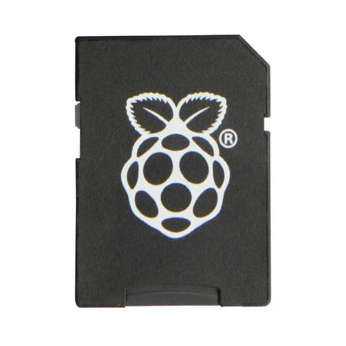 Raspberry Pi – Plástico Micro SD (8 GB, NOOBS)