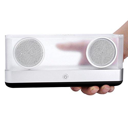 BassPal i30 Altavoz Bluetooth Transparente 4.2 con 8 horas de Reproducción, Salida 20W Altavoz portátil inalámbrico con sonido estéreo HD y Bajo Superior, Altavoces coloridos LED para teléfonos, Tabletas, PC, Coche (Negro)