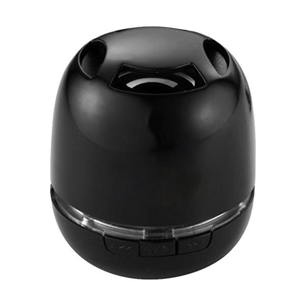 Avenue - Commander - Casse portatili Bluetooth 1 spesavip