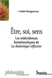 Etre, soi, sens : Les antécédences herméneutiques de La dialectique réflexive