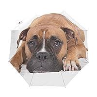Bennigiry Beautiful Boxer Dog 3 Folds Auto Open Close Umbrella, Compact Windproof Portable Durability Travel Rain Umbrella Easy Carrying