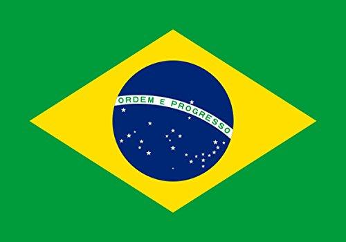 ne Flagge Länder Städte 90 x 150cm Fußball WM Fan Party Farbe Brasilien ()
