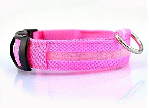 Seturrip - Nylon-LED-Haustier-Hundehalsband, Nacht-Sicherheits-Blitzen-Glühen im dunklen Hundeleine, Hunde Luminous Fluorescent Halsbänder Pet Supplies [L-Kragen Rosa] (In Dunklen Der Rosa-glühen Farbe)