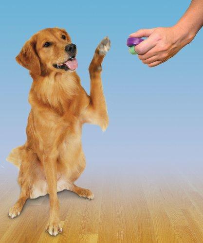 PetSafe CLKR-RTL Clik-R Trainingstool Clicker Klicker für Hunde und Katzen mit praktischer Fingerschlaufe - 3