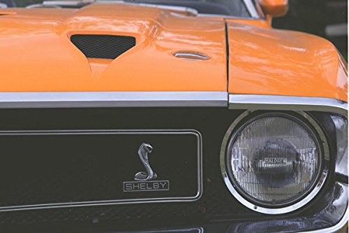 465004-1969-ford-mustang-shelby-gt-350-a4-photo-poster-print-10x8