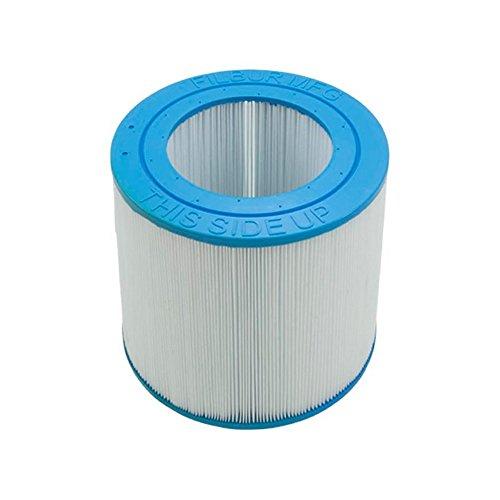 Pentair R173213 50 Sq. Ft. Cartouche d'élément pour nettoyer et systèmes de filtration clairs