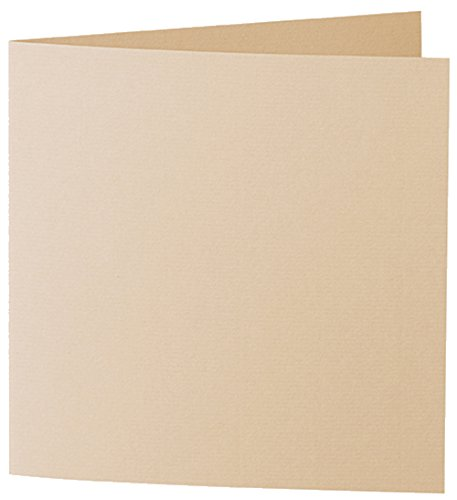 cardstock-scored-10745226-585-artoz-1001-soft-feel-baileys-220-g-pack-of-10