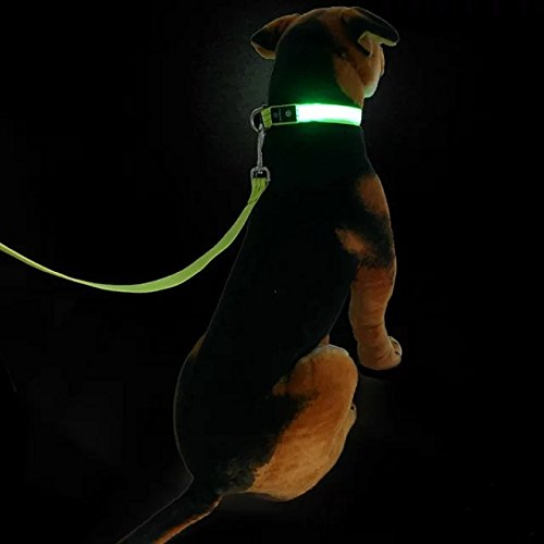 led-dog-collar-leash-set-release-buckle-led-flash-light-dog-collar-leads-rope-by-masbrill-light-up-f
