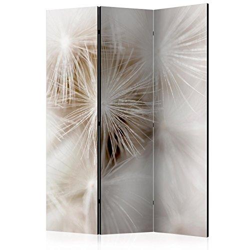 murando – Paravent : 135x172 cm | Reversible impression sur papier intissé | 100% opaque | Agréable a toucher I Foto Paravent | Déco | Paravent décoratif pour chambre | Paravent en bois avec impression | b-B-0140-z-b