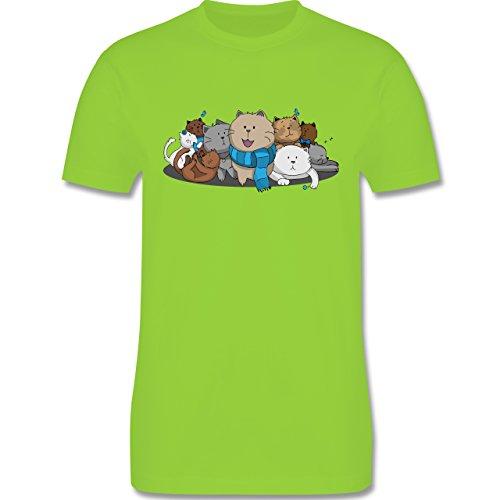 Shirtracer Katzen - Süße Katzen - Herren T-Shirt Rundhals Hellgrün