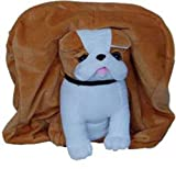 TOYHUB Kid's Soft Toy School Bag (Brown, 40 cm)