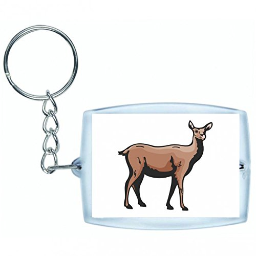 keychain-lamas-stands-looks-at-camel-pair-hofer-in-black-white-blue-pink-yellow-red-green-keyring-ba