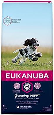 Eukanuba Valp torrfoder för medelstora valpar med fräsch kyckling, 15 kg