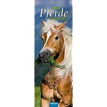 Streifenkalender Pferde 2017